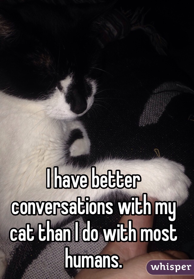 I have better conversations with my cat than I do with most humans.