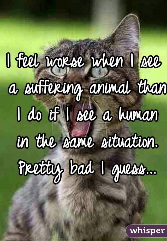 I feel worse when I see a suffering animal than I do if I see a human in the same situation. Pretty bad I guess...