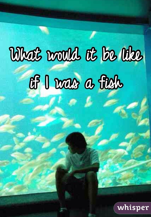 What would it be like if I was a fish