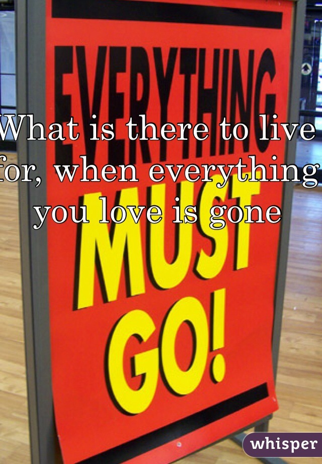What is there to live for, when everything you love is gone