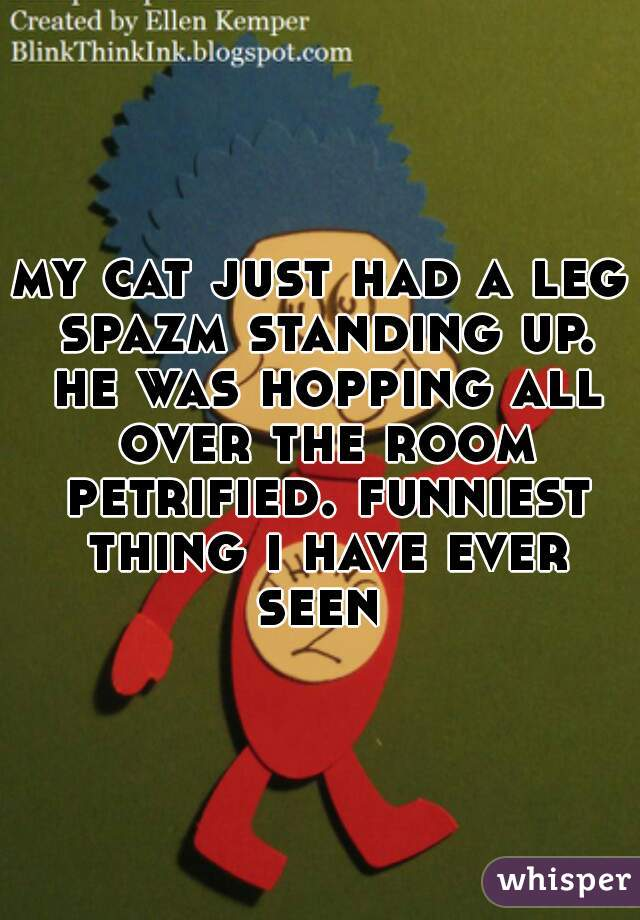 my cat just had a leg spazm standing up. he was hopping all over the room petrified. funniest thing i have ever seen