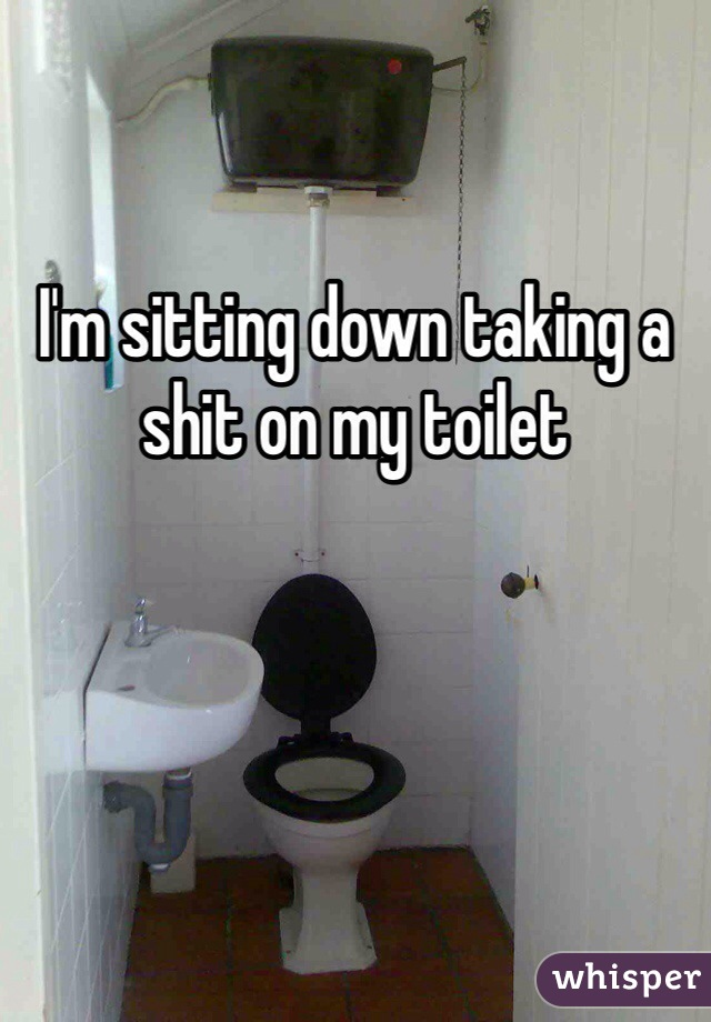 I'm sitting down taking a shit on my toilet