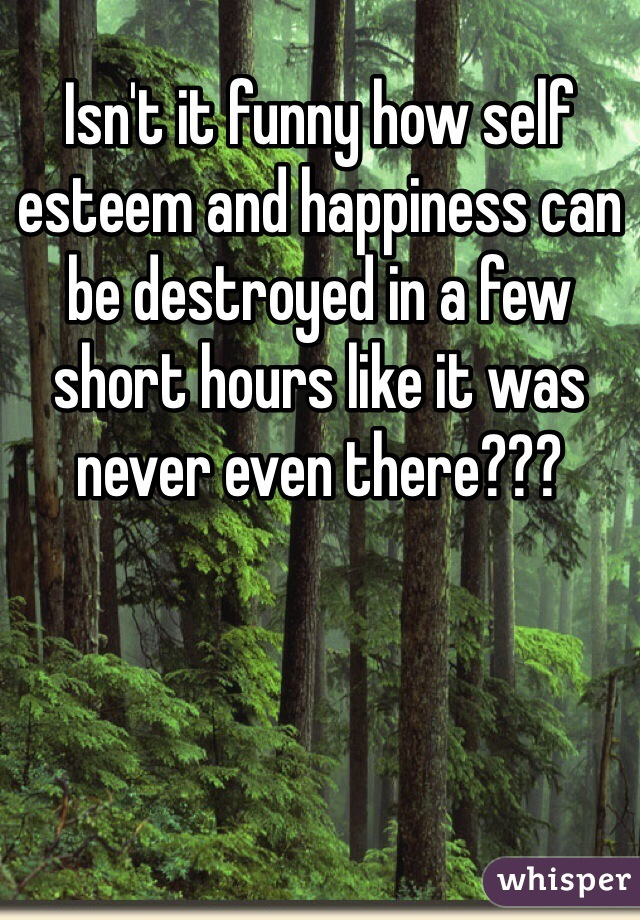 Isn't it funny how self esteem and happiness can be destroyed in a few short hours like it was never even there???