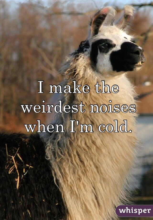 I make the weirdest noises when I'm cold.