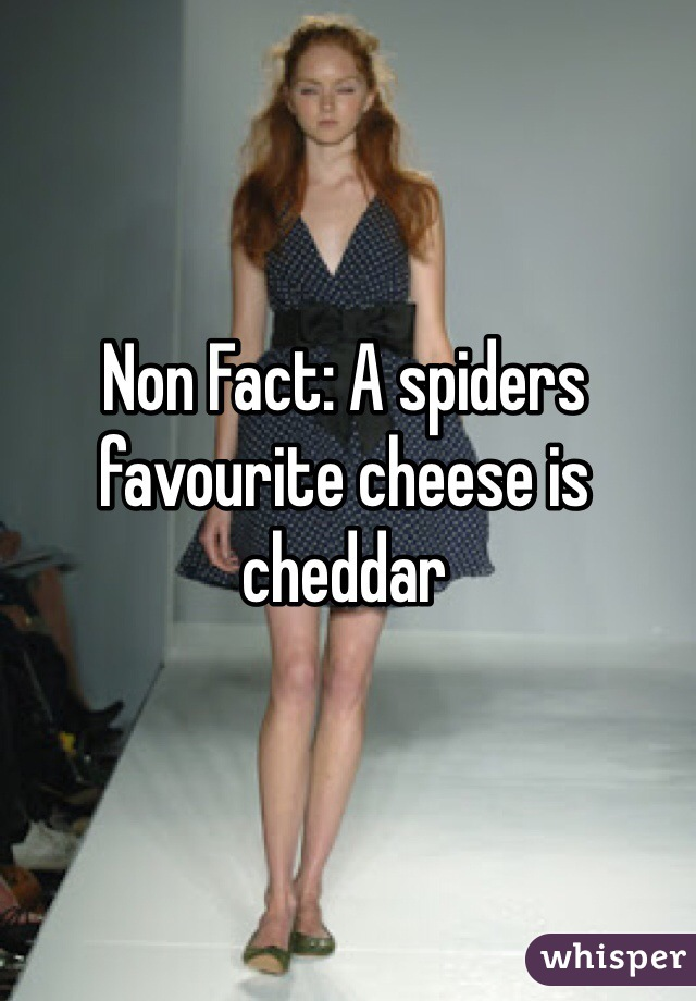 Non Fact: A spiders favourite cheese is cheddar