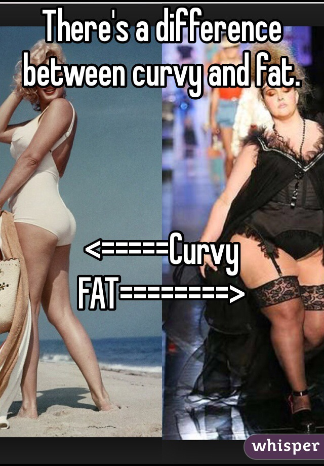 There's a difference between curvy and fat.     <=====Curvy FAT========>
