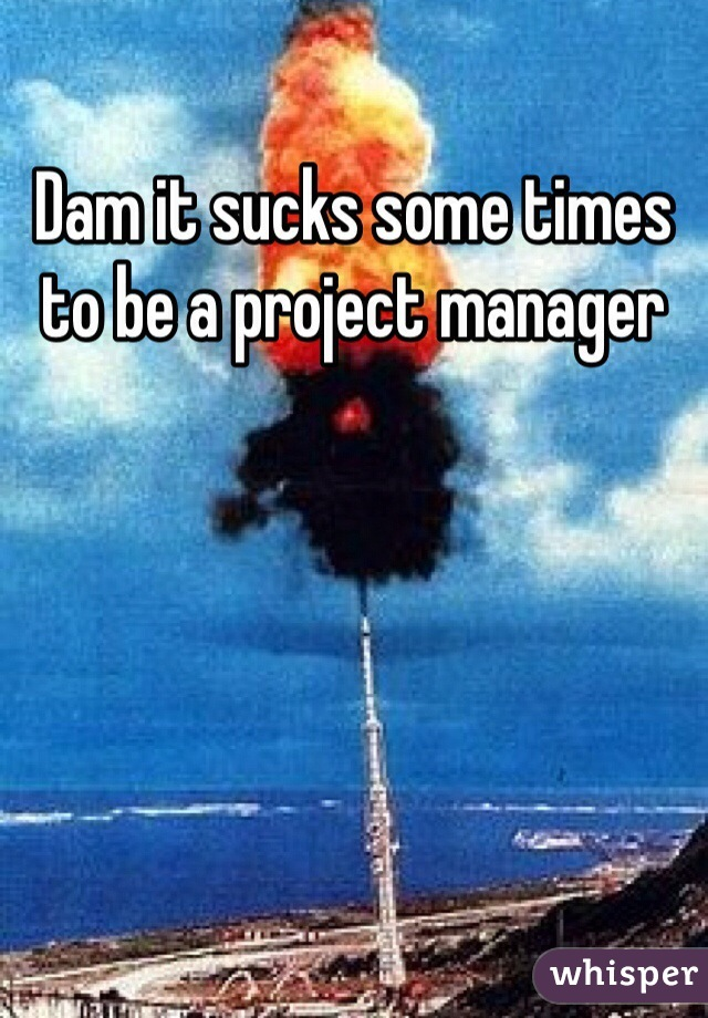 Dam it sucks some times to be a project manager