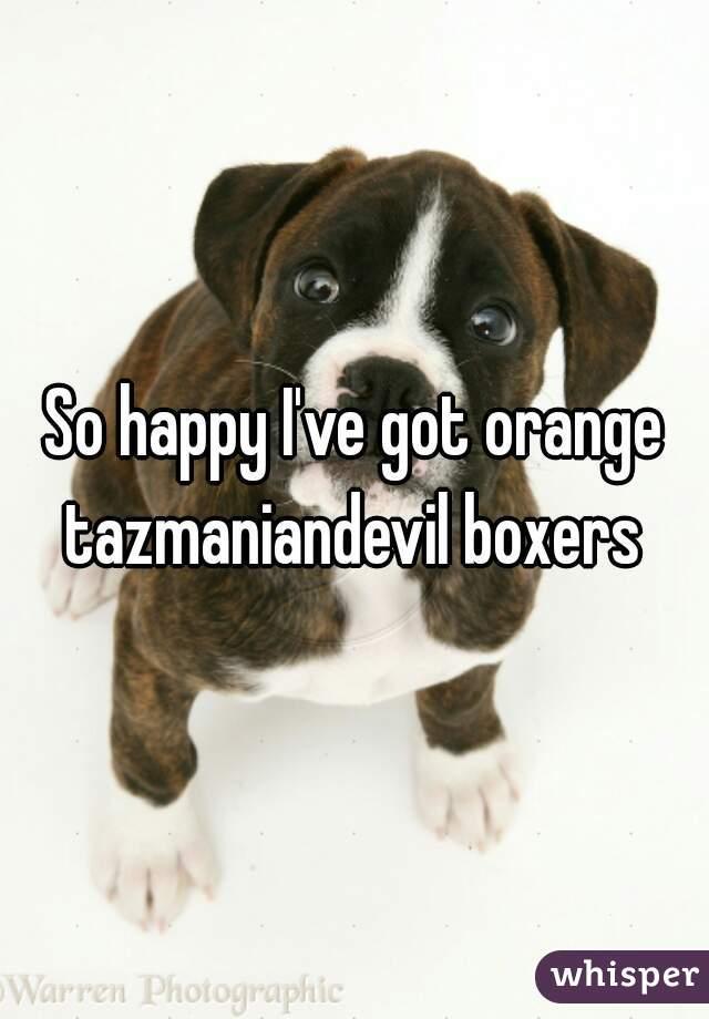 So happy I've got orange tazmaniandevil boxers