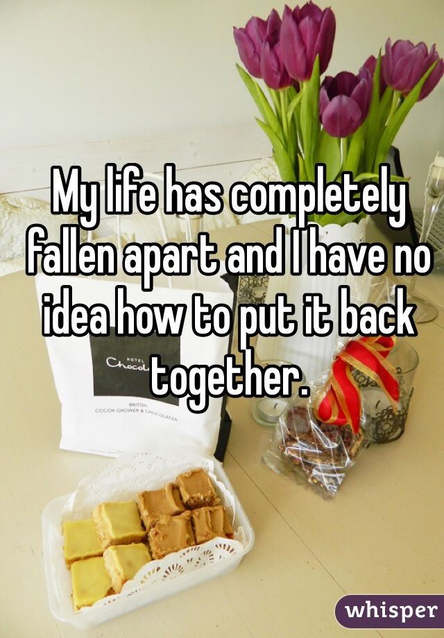 My life has completely fallen apart and I have no idea how to put it back together.