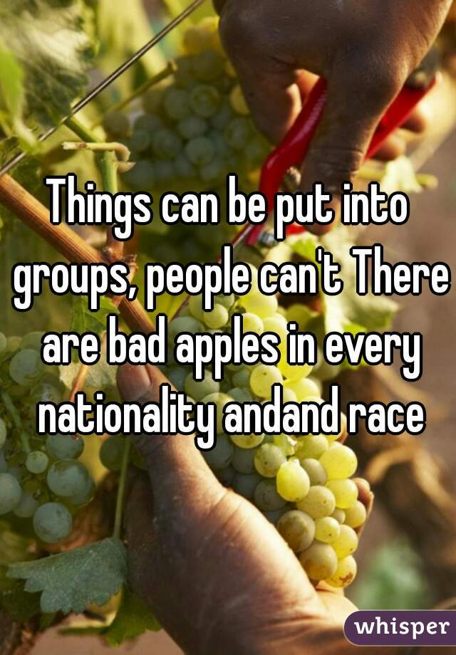Things can be put into groups, people can't There are bad apples in every nationality andand race