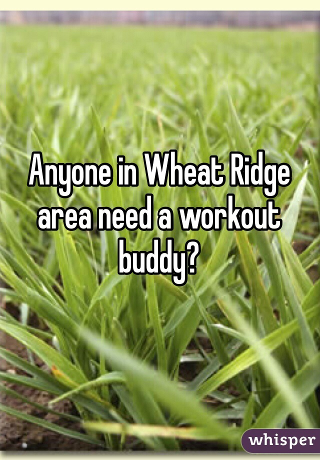 Anyone in Wheat Ridge area need a workout buddy?