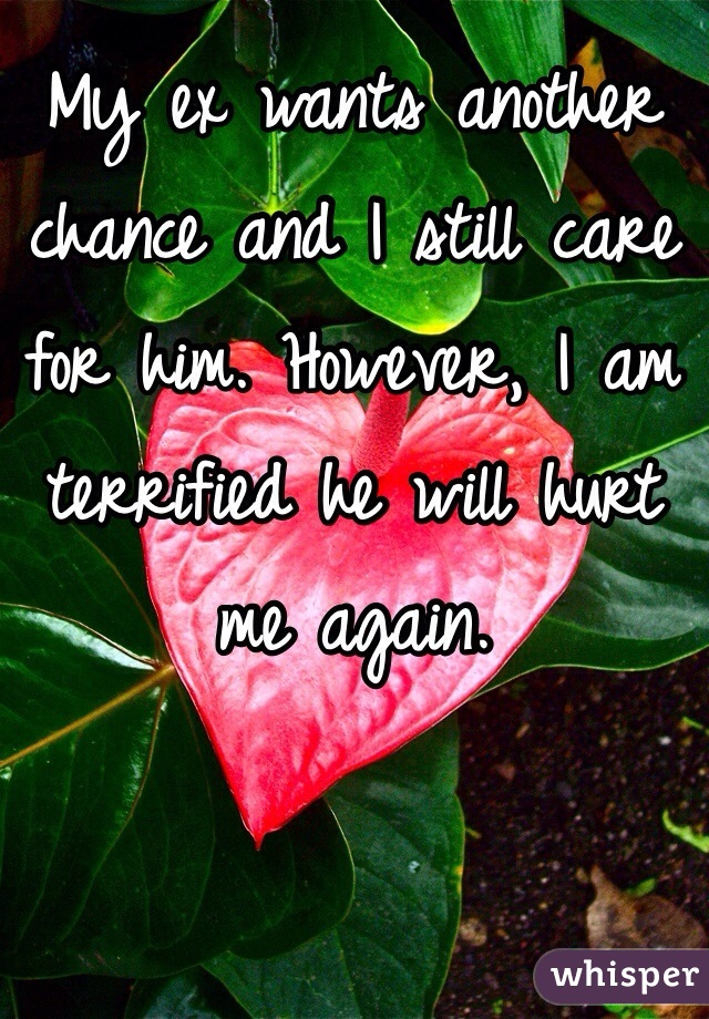 My ex wants another chance and I still care for him. However, I am terrified he will hurt me again.