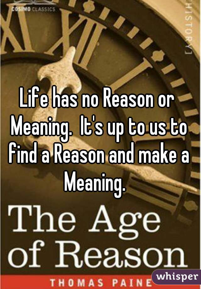 Life has no Reason or Meaning.  It's up to us to find a Reason and make a Meaning.