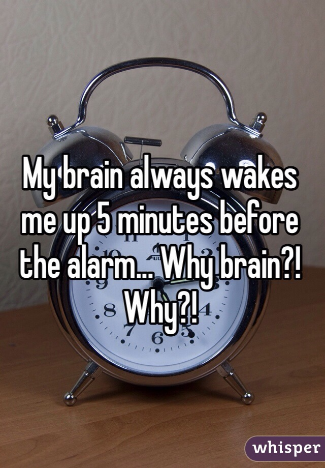 My brain always wakes me up 5 minutes before the alarm... Why brain?! Why?!