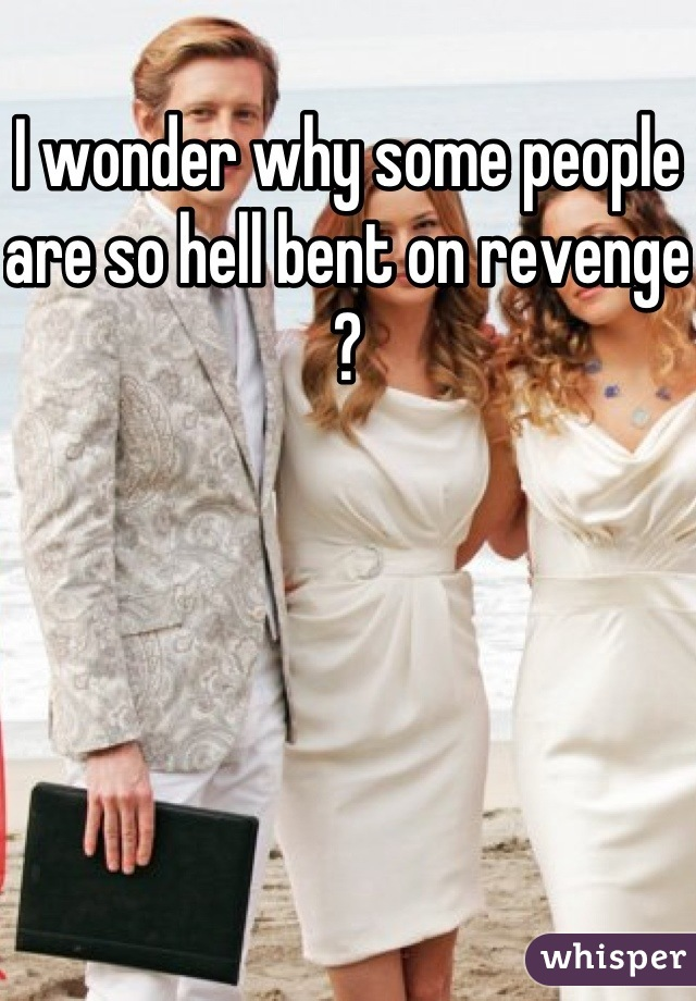 I wonder why some people are so hell bent on revenge ?
