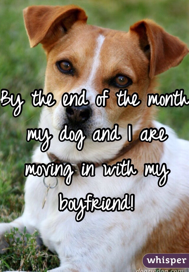 By the end of the month my dog and I are moving in with my boyfriend!
