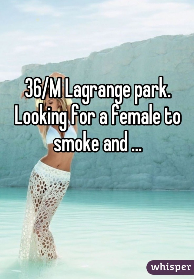 36/M Lagrange park. Looking for a female to smoke and ...