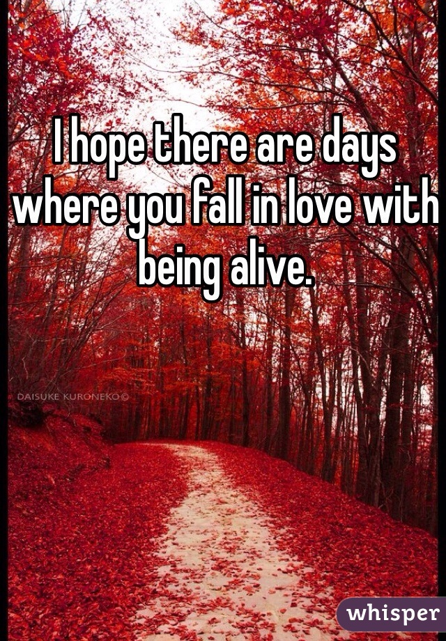 I hope there are days where you fall in love with being alive.