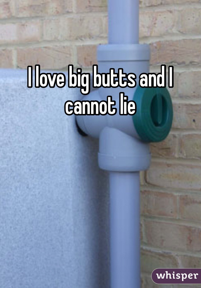 I love big butts and I cannot lie