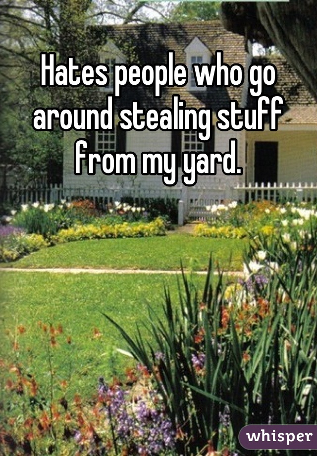 Hates people who go around stealing stuff from my yard.