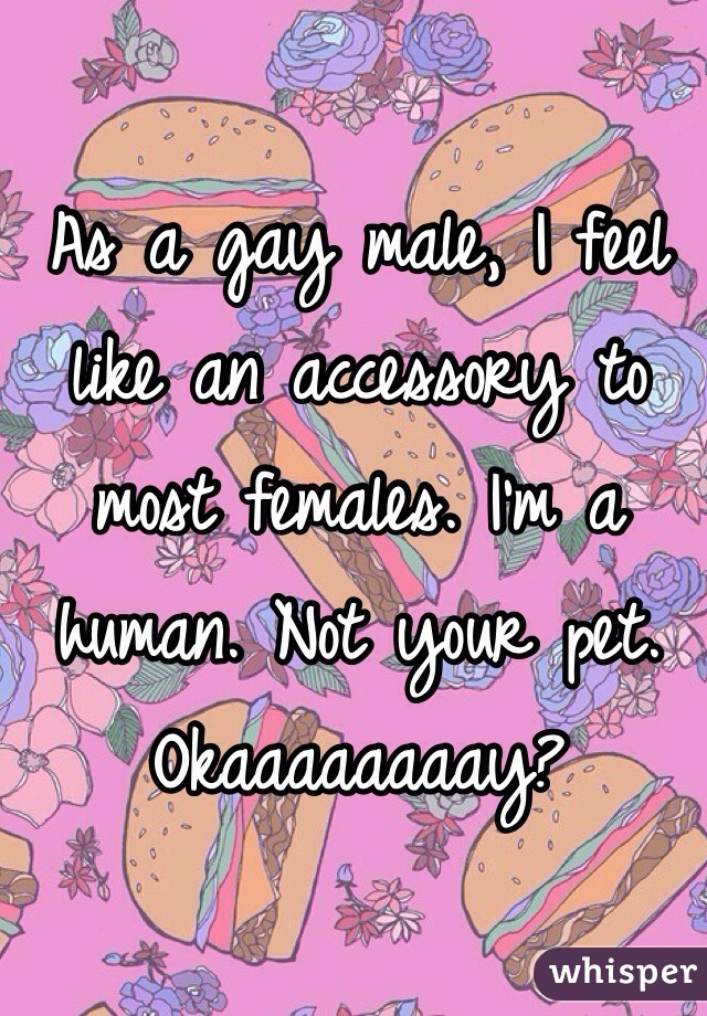 As a gay male, I feel like an accessory to most females. I'm a human. Not your pet. Okaaaaaaaay?