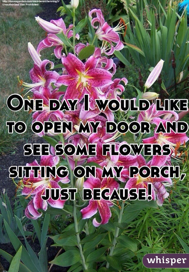 One day I would like to open my door and see some flowers sitting on my porch, just because!