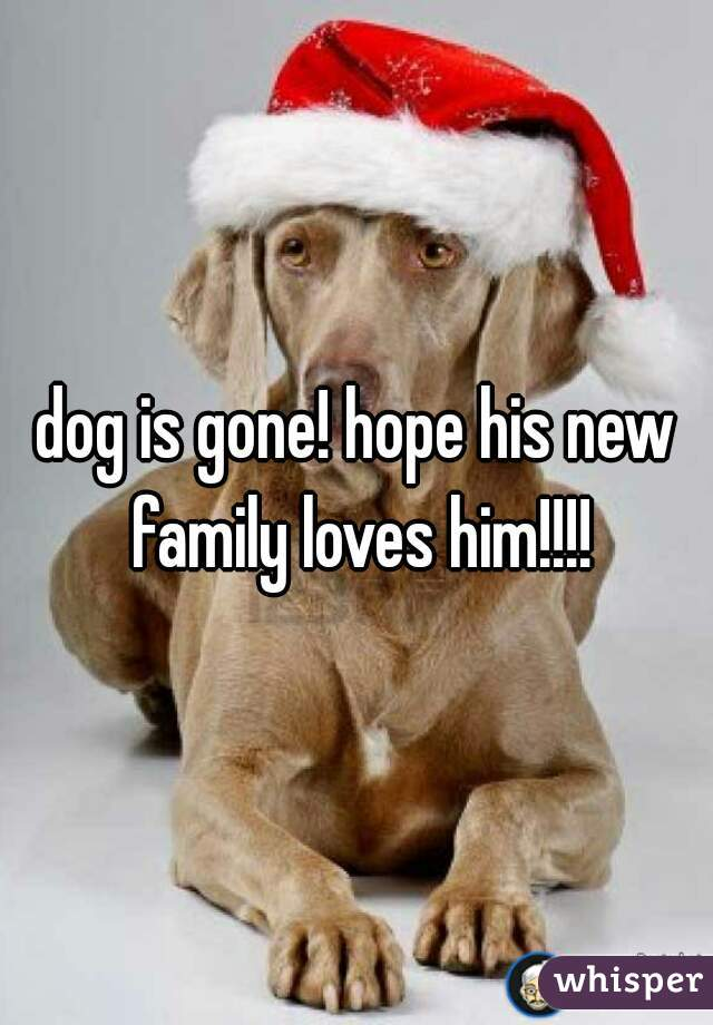 dog is gone! hope his new family loves him!!!!