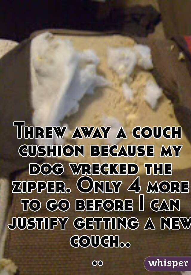 Threw away a couch cushion because my dog wrecked the zipper. Only 4 more to go before I can justify getting a new couch....