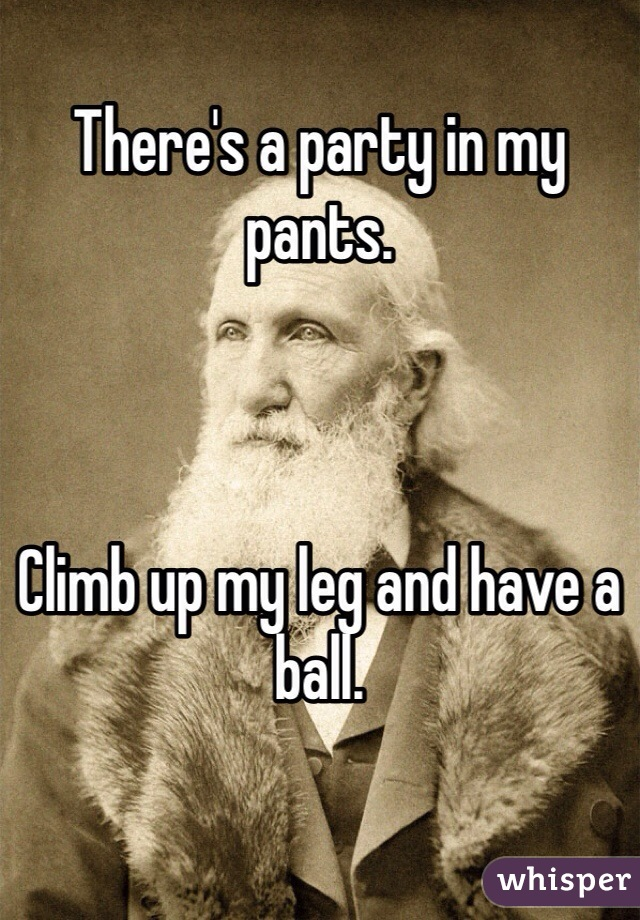 There's a party in my pants.     Climb up my leg and have a ball.