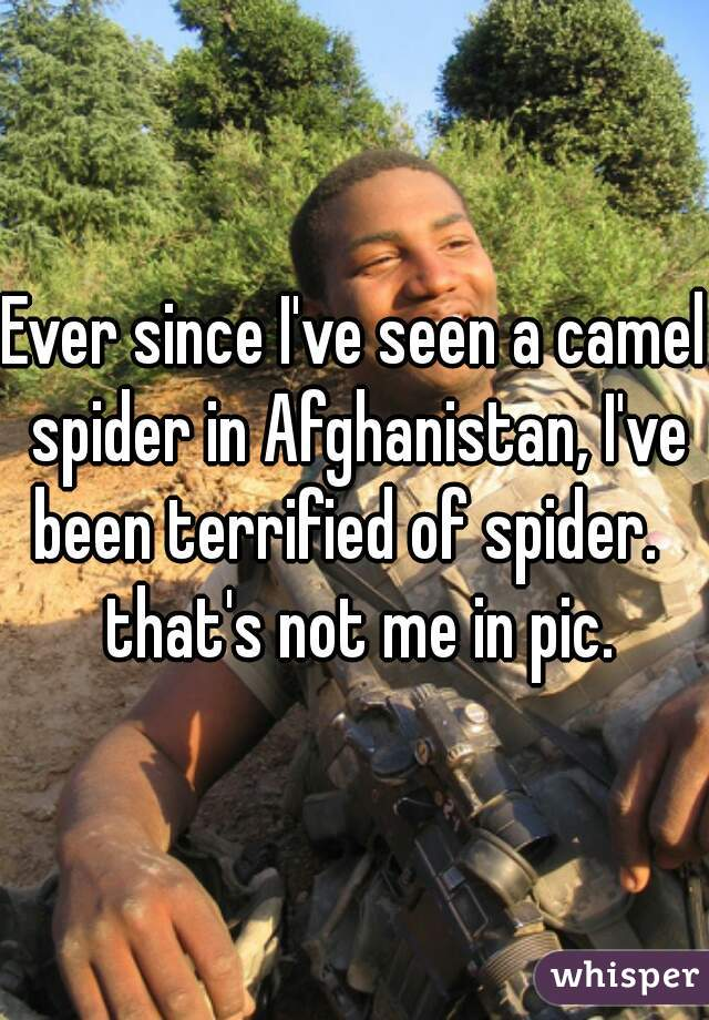Ever since I've seen a camel spider in Afghanistan, I've been terrified of spider.   that's not me in pic.