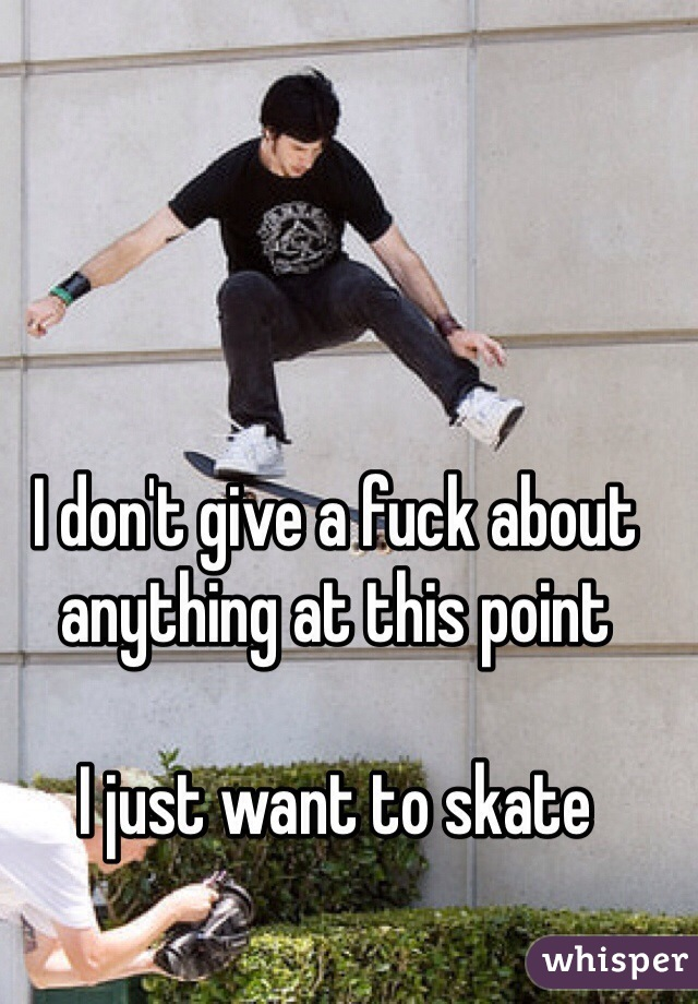 I don't give a fuck about anything at this point   I just want to skate