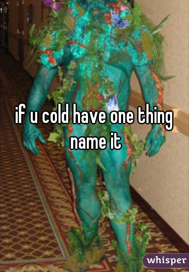if u cold have one thing name it