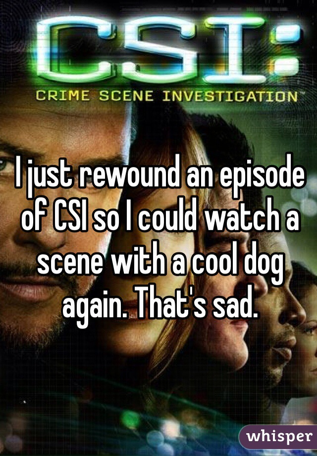 I just rewound an episode of CSI so I could watch a scene with a cool dog again. That's sad.