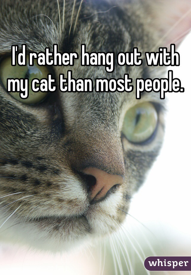 I'd rather hang out with my cat than most people.