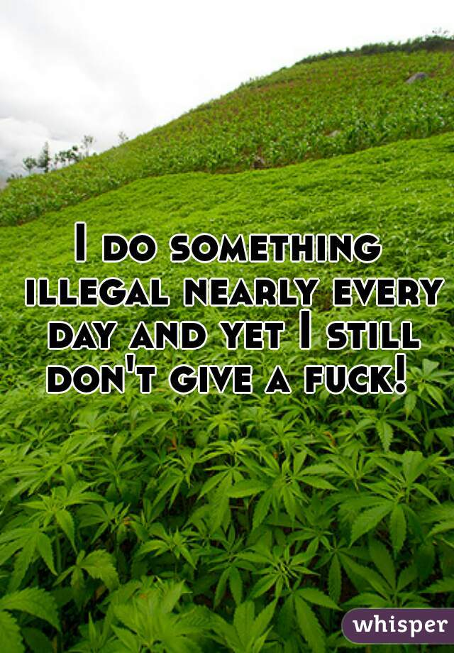 I do something illegal nearly every day and yet I still don't give a fuck!