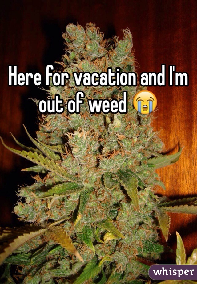 Here for vacation and I'm out of weed 😭