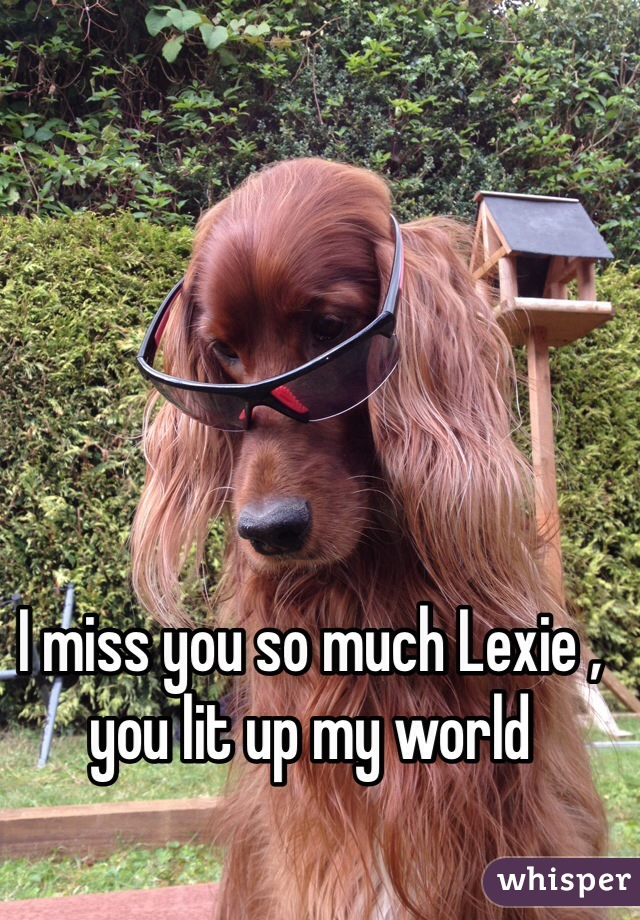 I miss you so much Lexie , you lit up my world