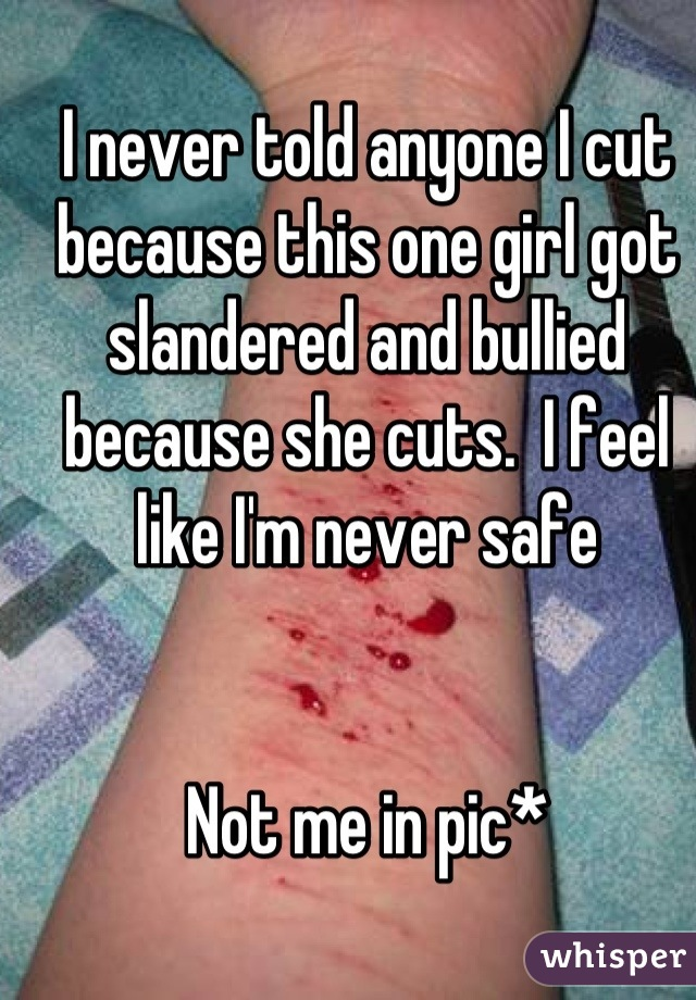 I never told anyone I cut because this one girl got slandered and bullied because she cuts.  I feel like I'm never safe    Not me in pic*
