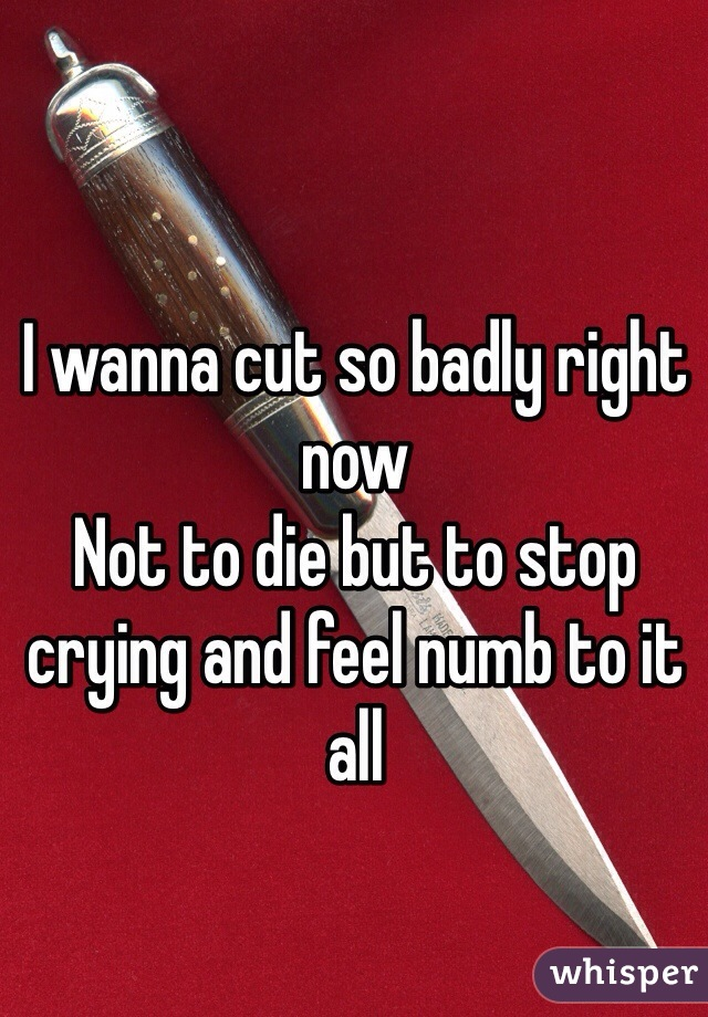 I wanna cut so badly right now  Not to die but to stop crying and feel numb to it all