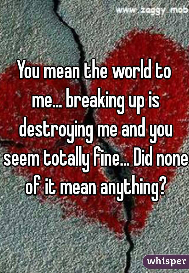 You mean the world to me... breaking up is destroying me and you seem totally fine... Did none of it mean anything?