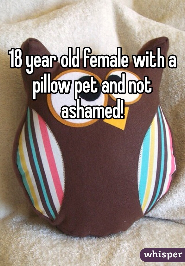 18 year old female with a pillow pet and not ashamed!