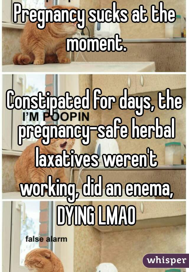 Pregnancy sucks at the moment.    Constipated for days, the pregnancy-safe herbal laxatives weren't working, did an enema, DYING LMAO