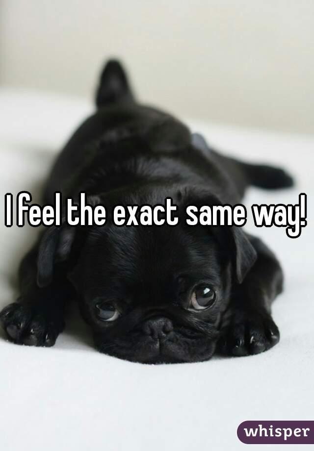 I feel the exact same way!