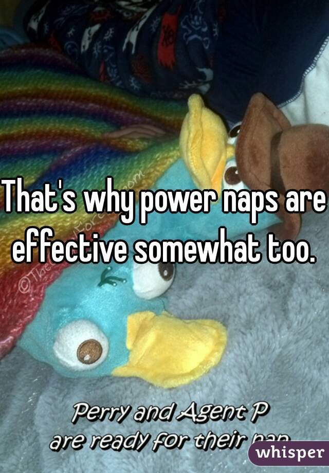 That's why power naps are effective somewhat too.