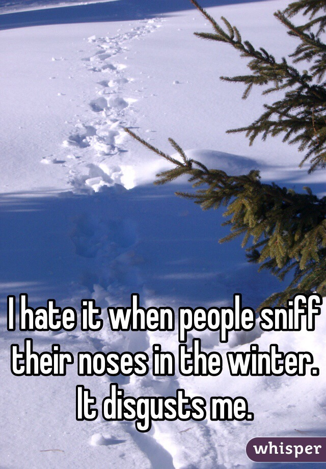 I hate it when people sniff their noses in the winter. It disgusts me.