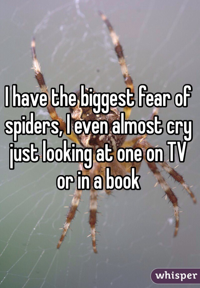 I have the biggest fear of spiders, I even almost cry just looking at one on TV or in a book