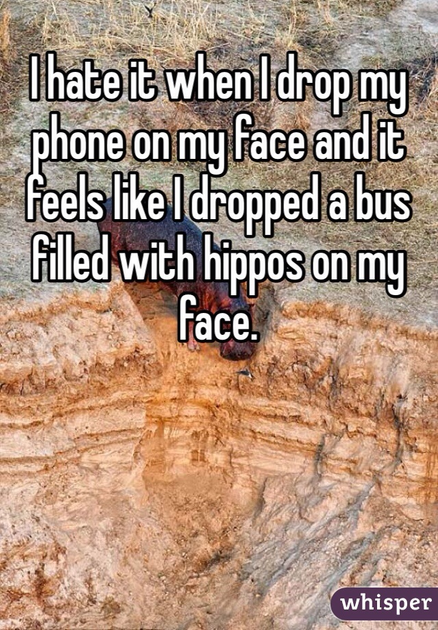I hate it when I drop my phone on my face and it feels like I dropped a bus filled with hippos on my face.