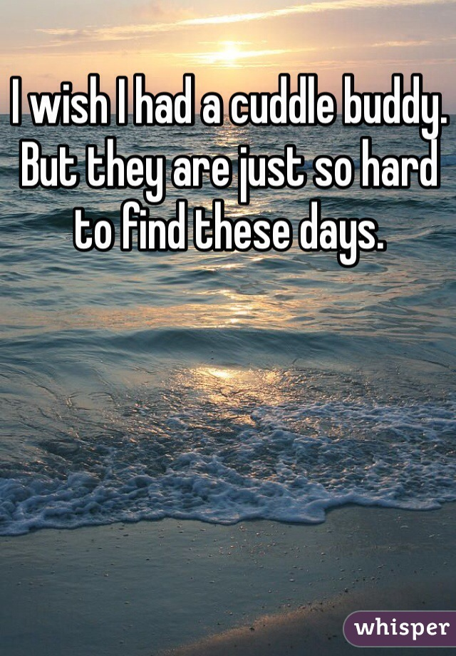 I wish I had a cuddle buddy. But they are just so hard to find these days.