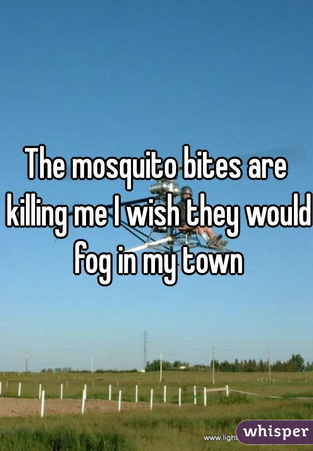 The mosquito bites are killing me I wish they would fog in my town
