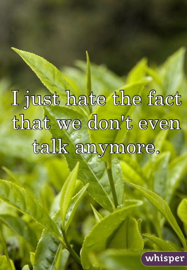 I just hate the fact that we don't even talk anymore.